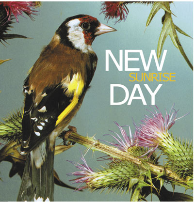 new-day-vinilo-cover-baja